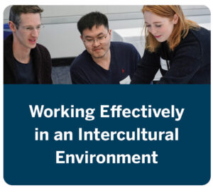 Working Effectively in an Intercultural Environment